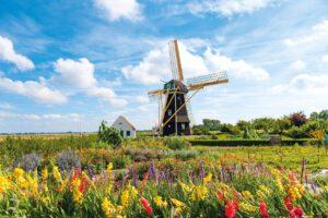 Windmühle in Aagtekerke - Kreuzfahrt: Zeeland & Flandern